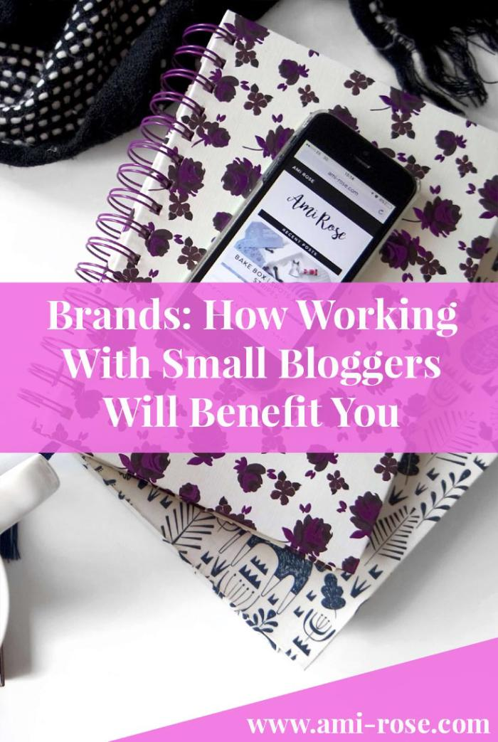 Are you a brand wondering just how much a blogger can do for you? Or a small blogger looking for your first collaboration opportunity? This will help!