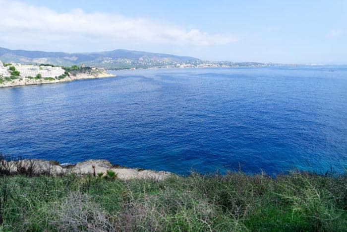 Things To Do In Majorca Magaluf Beach